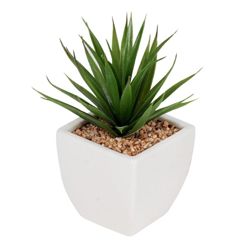 3.75in. Succulent Ceramic Pot 2 Asst