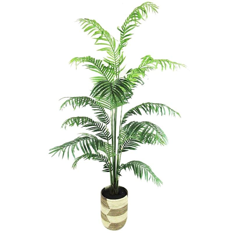Areca Palm Deco Basket, 4.5ft