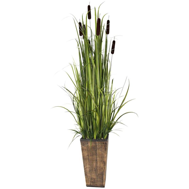61in. Grass In Wooden Pot