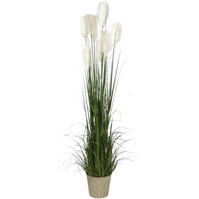 72.5in. Grass In Metal Pot