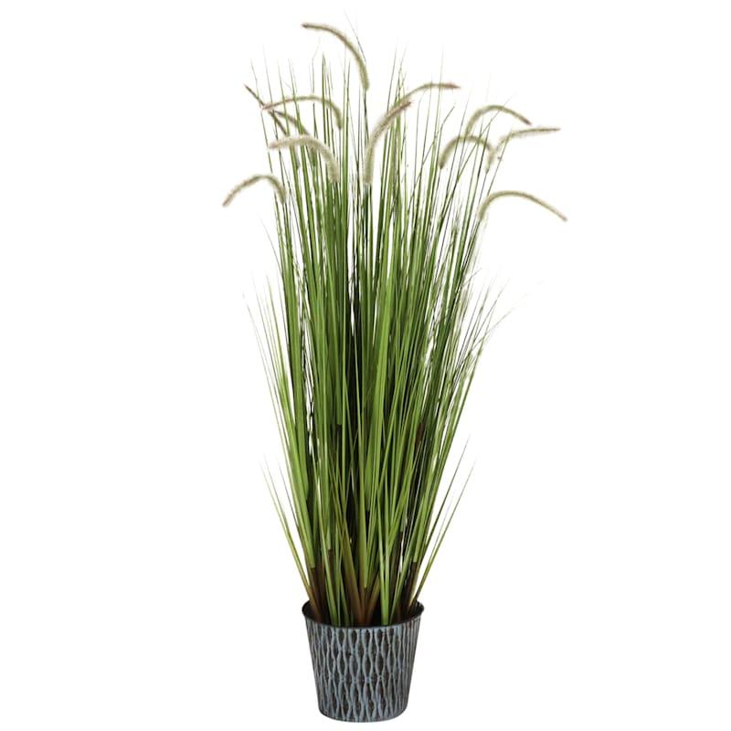 55.5in. Grass In Metal Pot