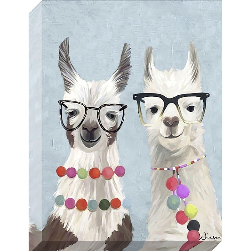 24X36 Fancy Llamas Enhanced Canvas