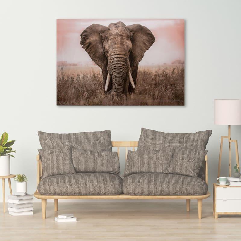 45X30 Encounter In Serengeti Glass Coat Canvas