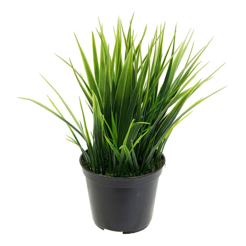 8in. Wild Grass Black Plastic Pot