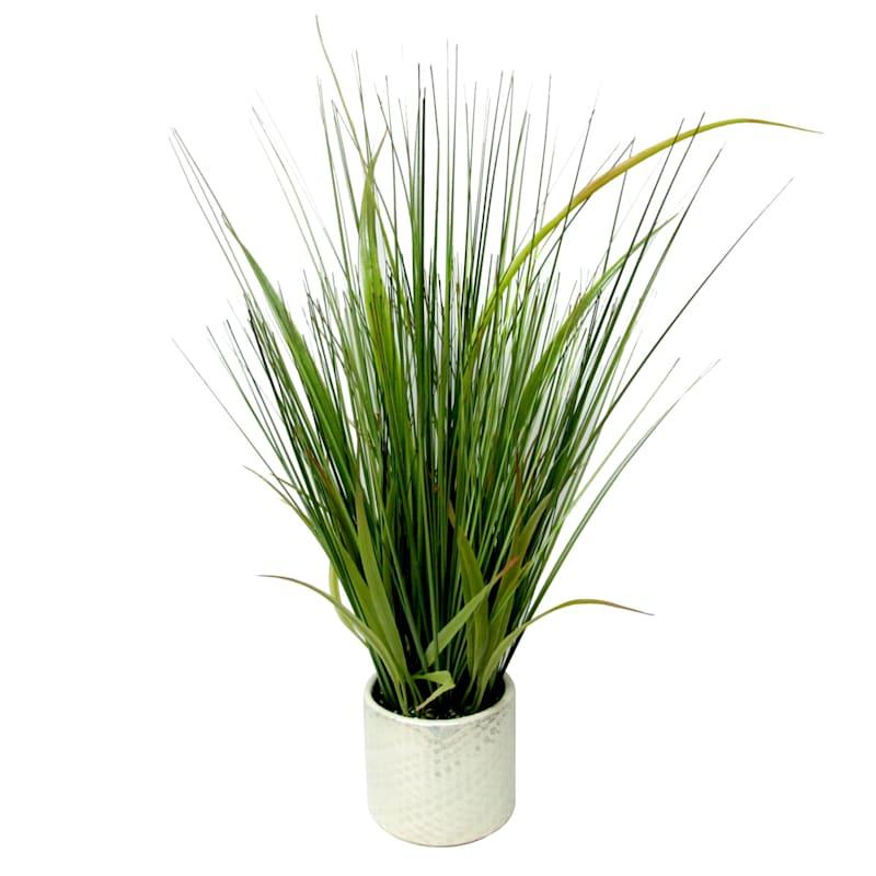 20X12 Gr Grass Pearl Pot