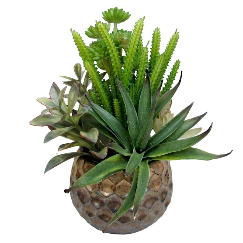 10X8 Green Succulent Garden Bronze Pot