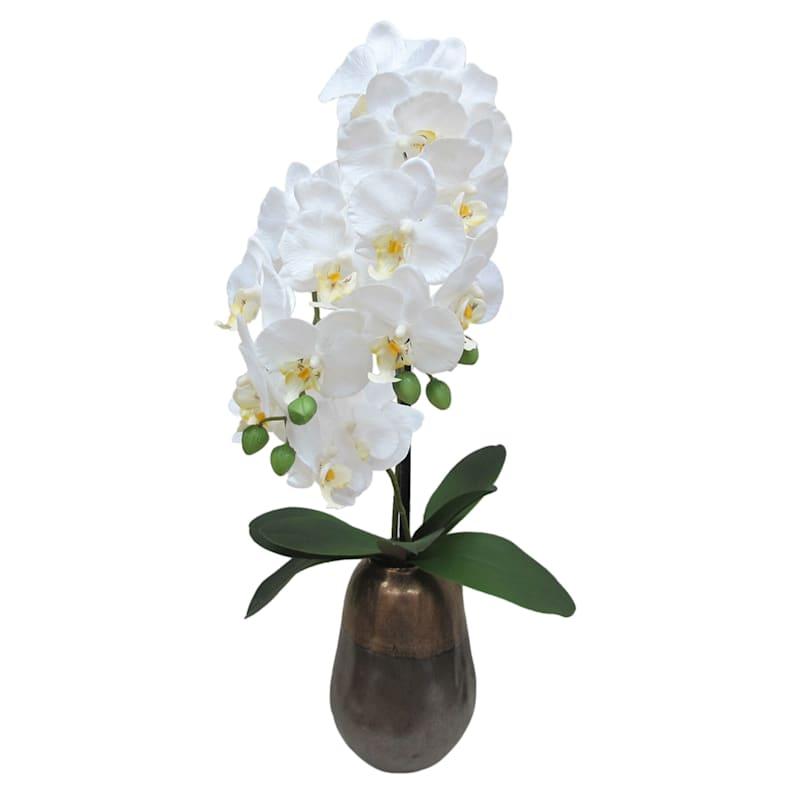 28X11 White Phal Orchid Bronze Pot