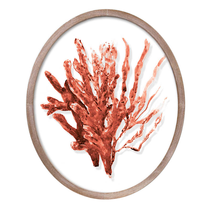 10x12 Red Coral on Glass Wall Decor