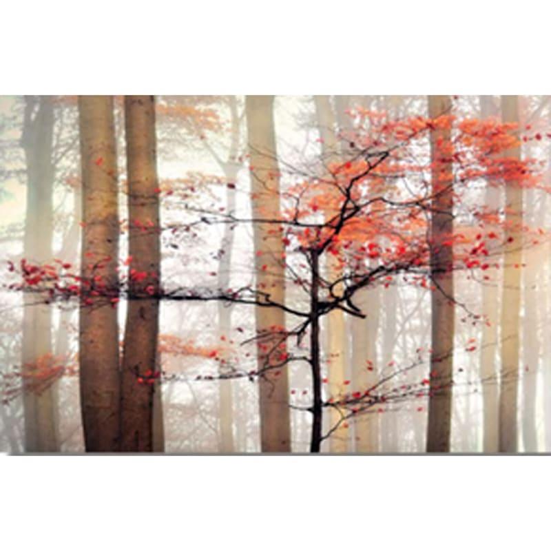 24X36 Orange Awakening Landscape Photography Canvas Art