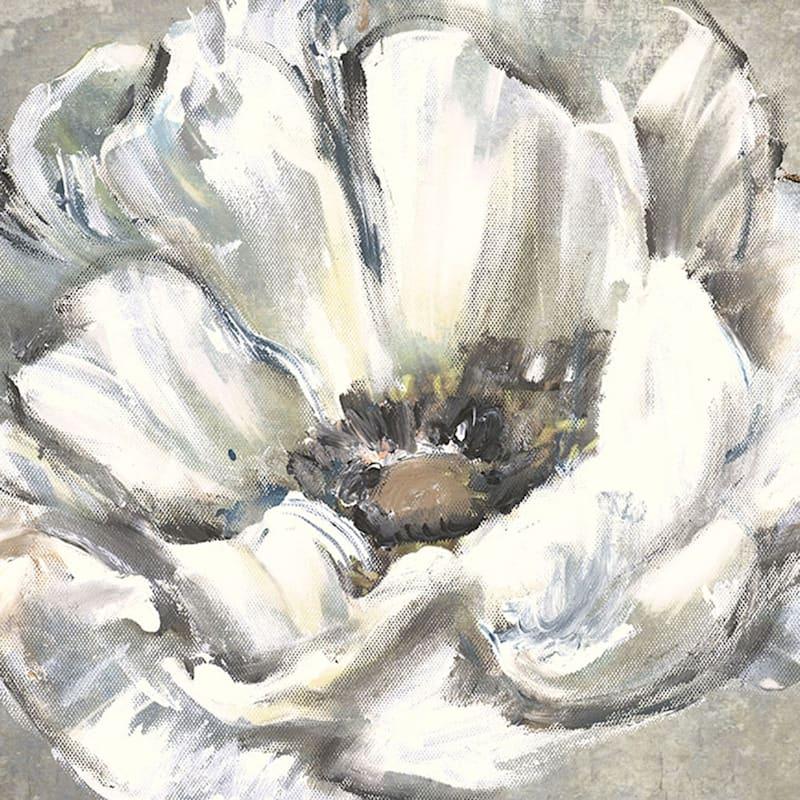 24X24 White Poppy Canvas Art