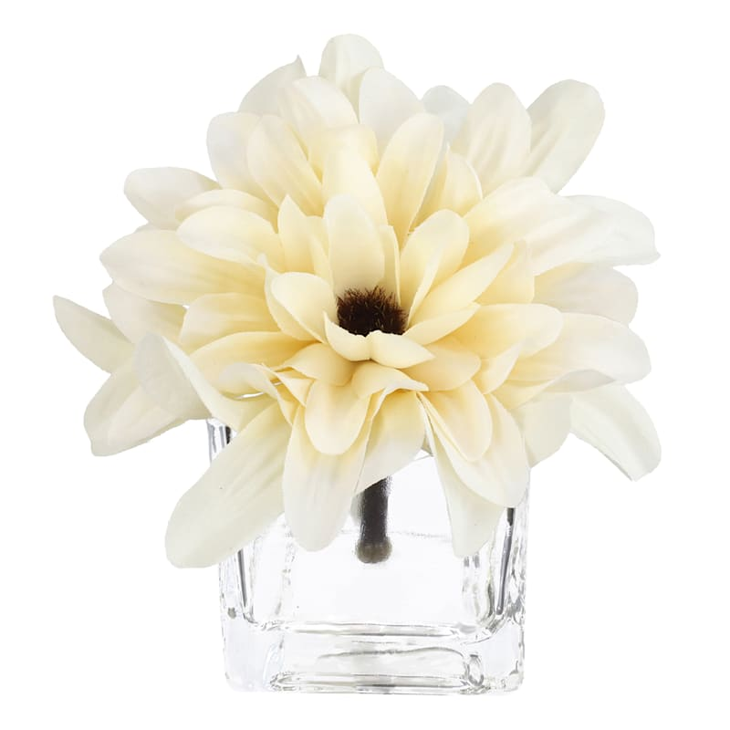 White Mums in Glass Vase