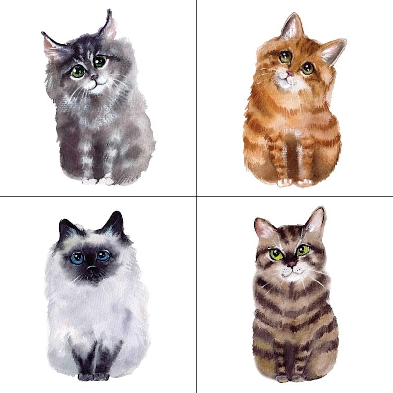 AA TEX 10X10 4PC CATS