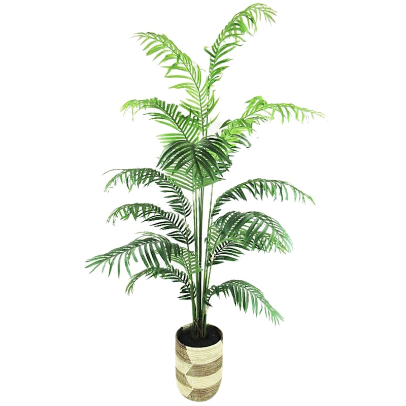 Areca Palm Deco Basket, 6.5ft
