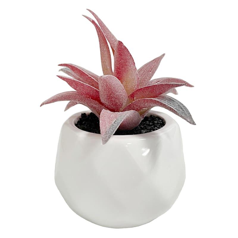 RED DECOR PLANT WHITE VASE