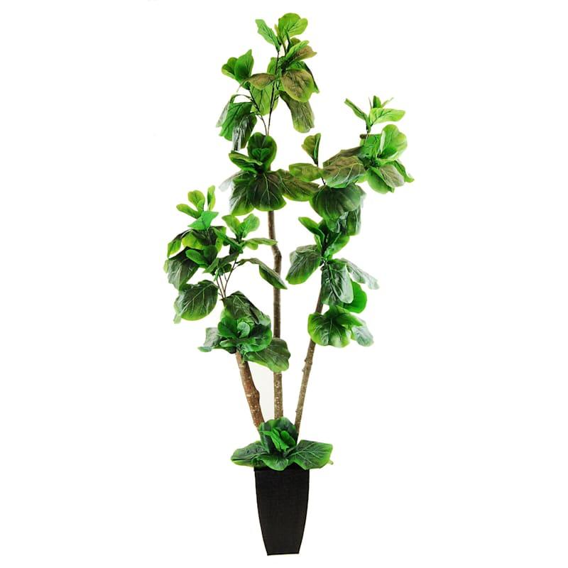 6.5ft. Fig Tree Basket