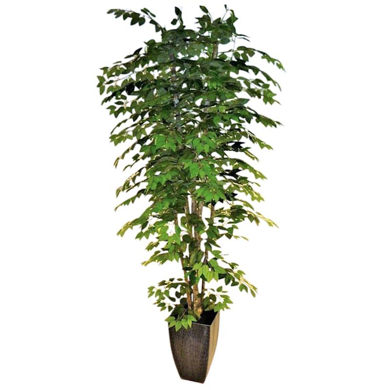 Green Ficus Metal Planter