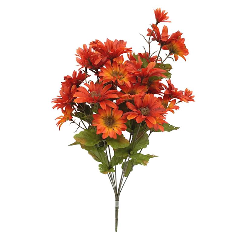 "Orange Daisy Bush 20"""