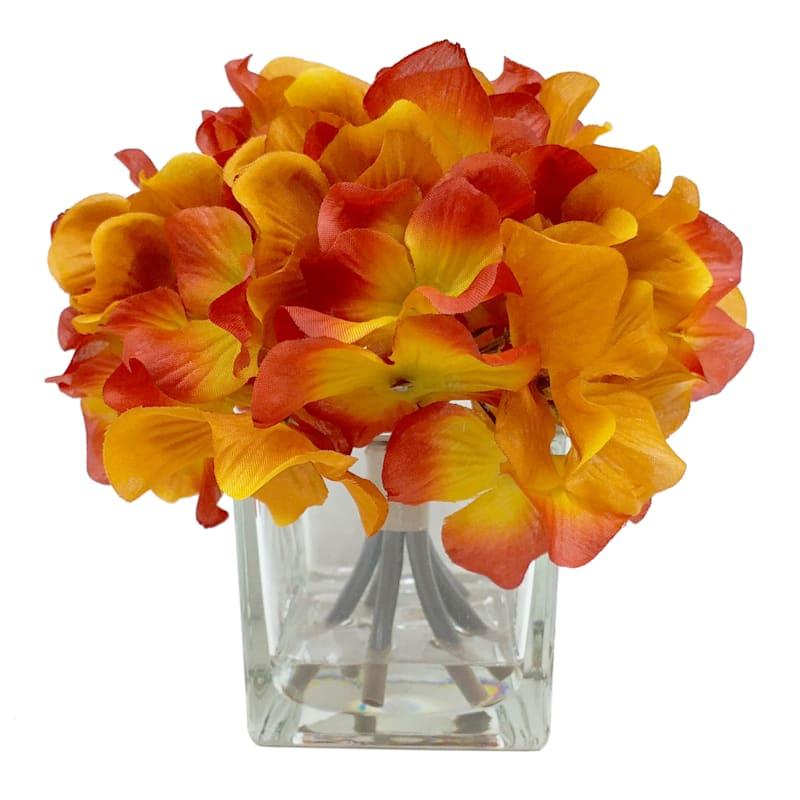 "Orange Hydrangeas in Glass Vase, 6.5"""