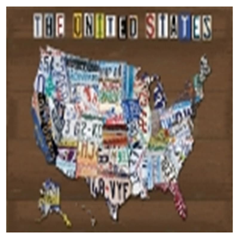 24X36 Us License Plate Map Canvas