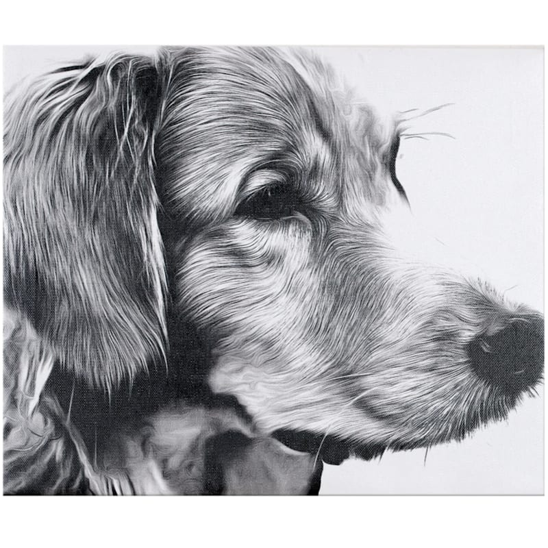 10X12 Black/White Dog Canvas Wall Art