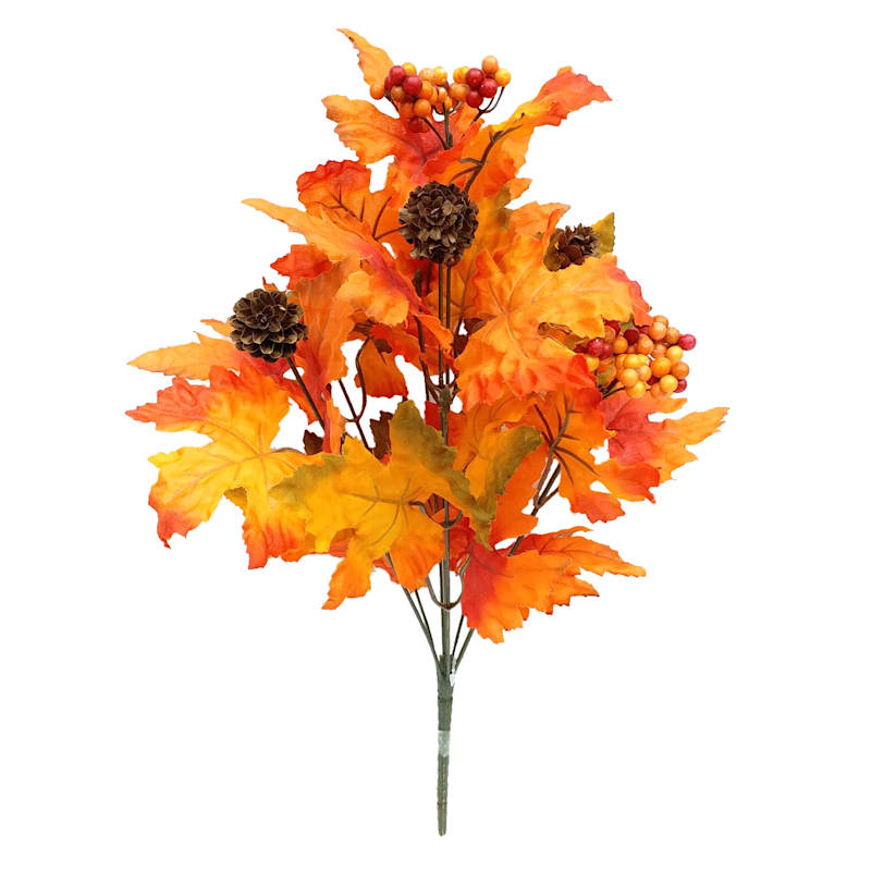 "Orange Maple Bush, 19"""