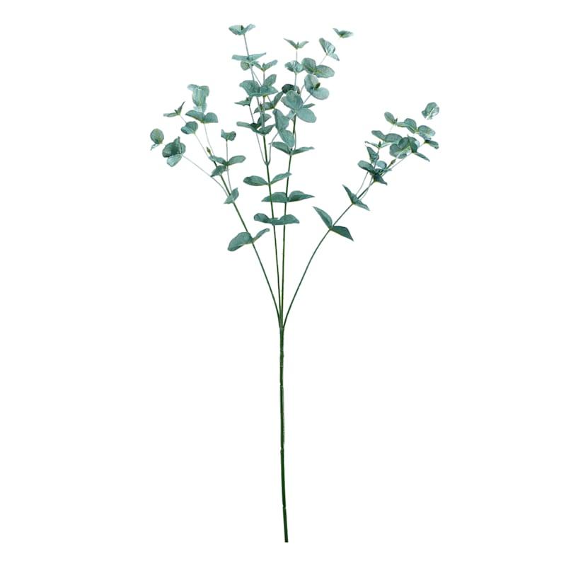 Medium Green Eucalyptus Stem