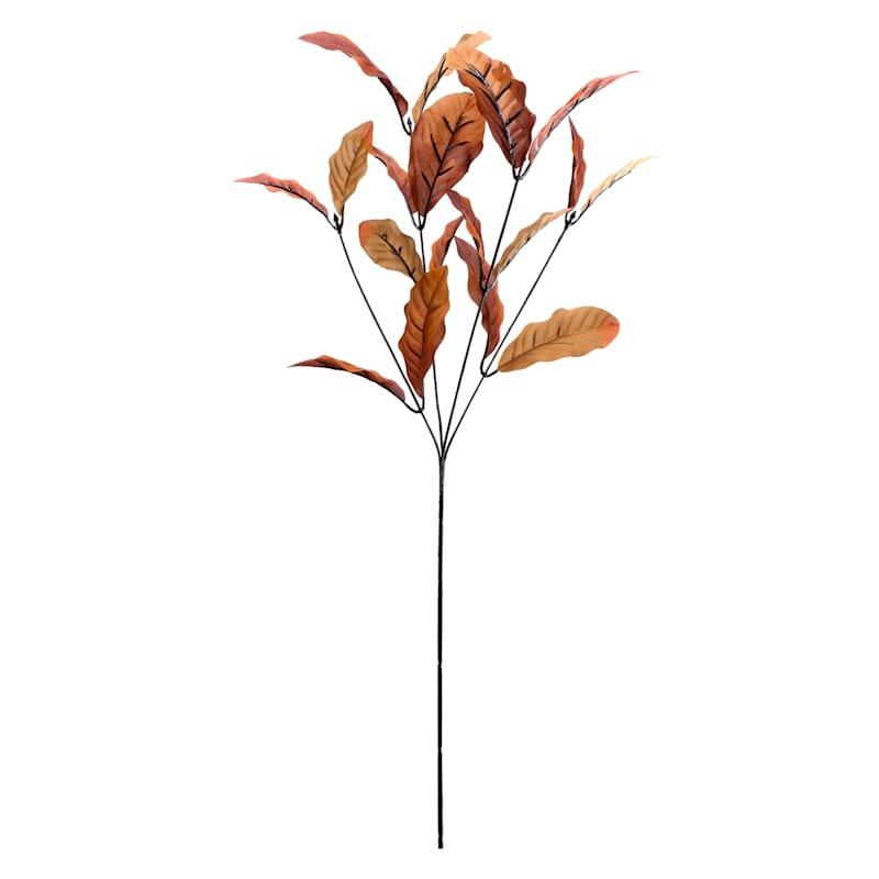 """Brown Magnolia Leaf Stem, 29.5"""""""