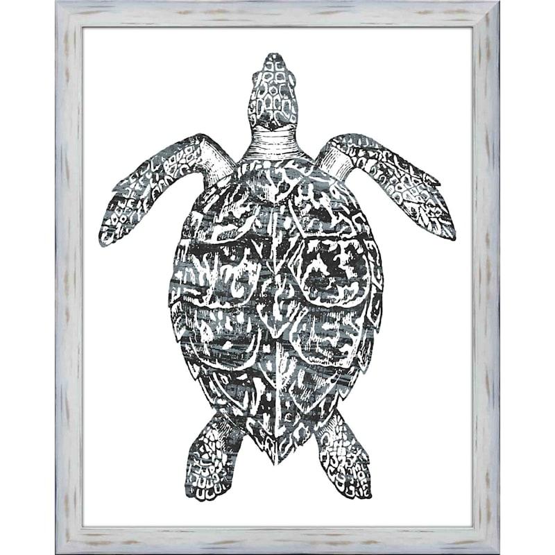 22X28 Coast Turtle Framed Art