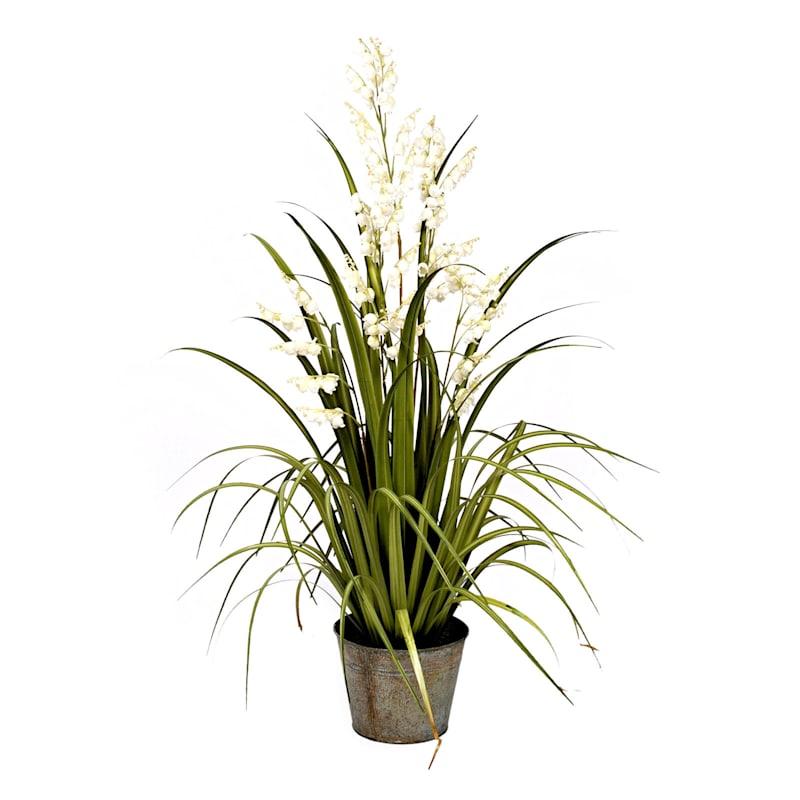Bellflower Grass In Metal Pot 42