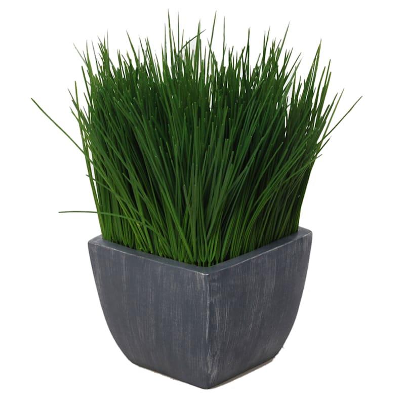 11in. Grass Rustic Grey Pot