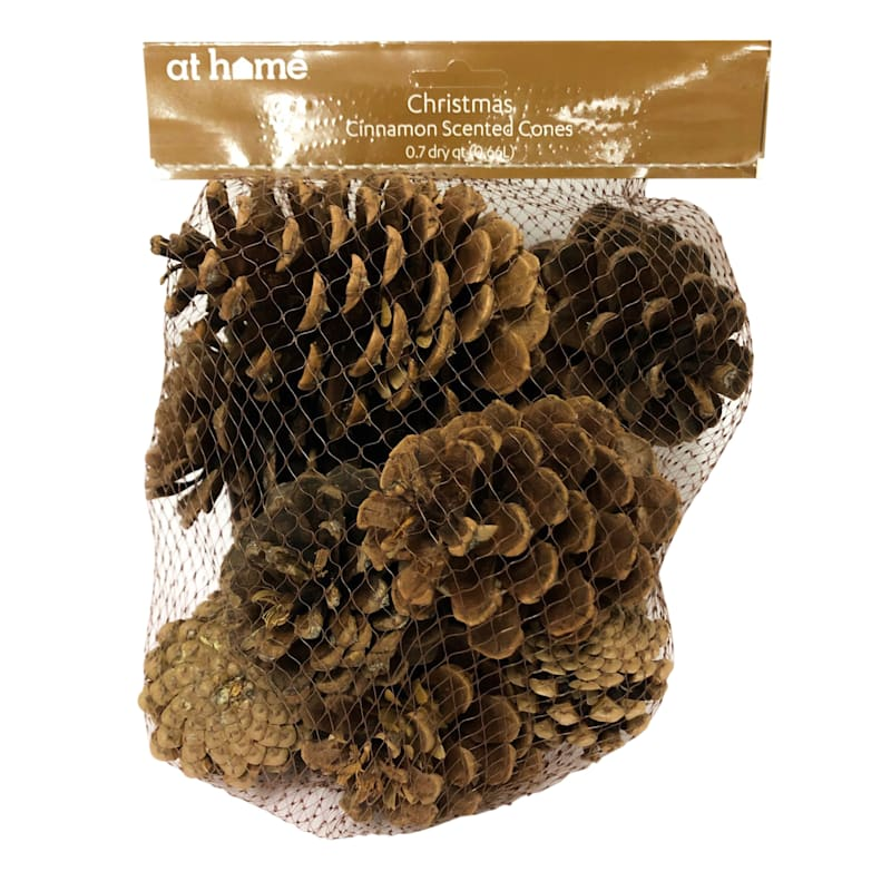 Cinnamon Pine Pinecones