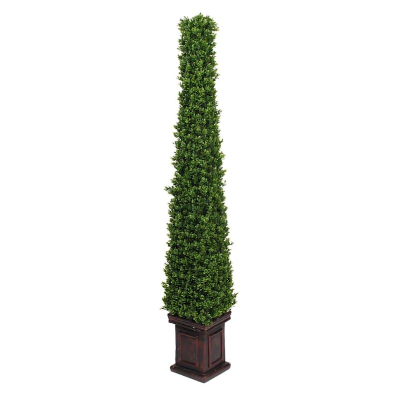 Pyramid Boxwood Topiary 61 In