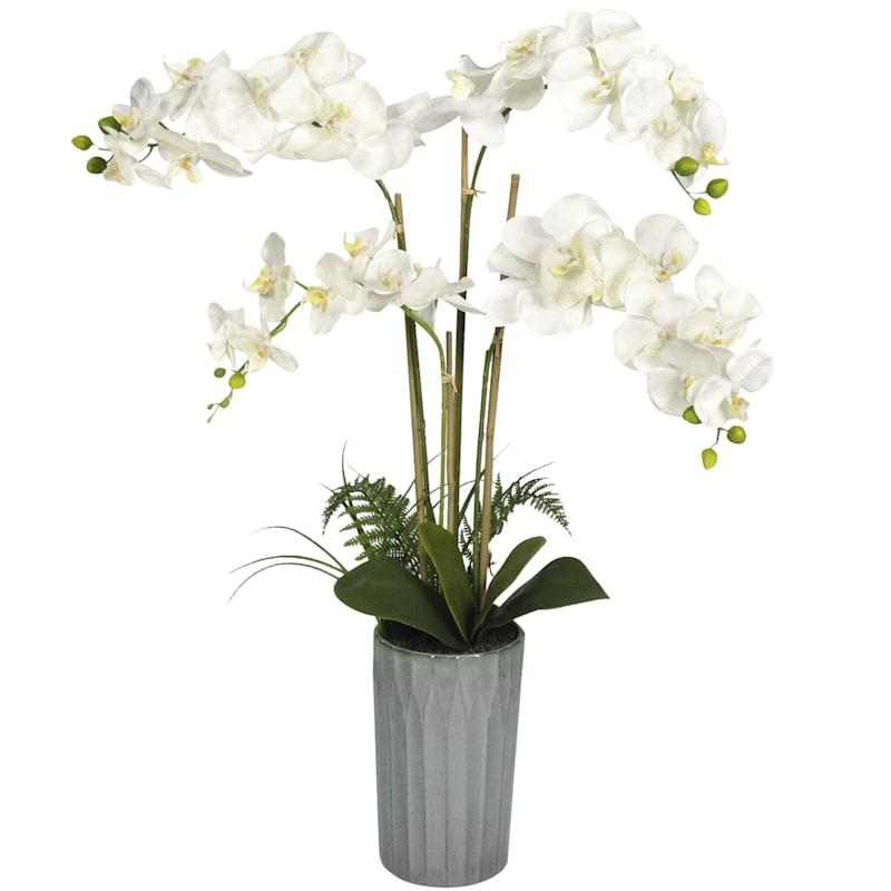 40in. Orchid In Ceramic Pot
