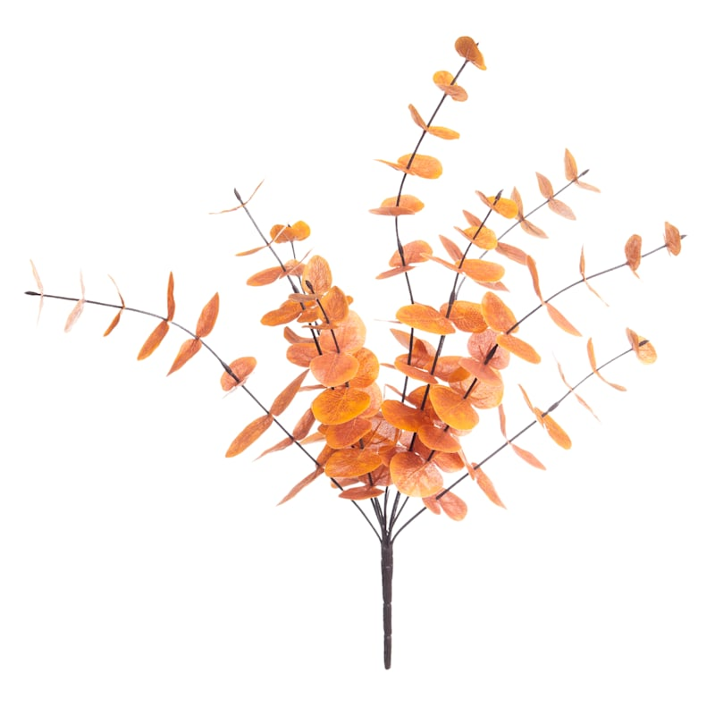 """Orange Eucalyptus Bush, 21.5"""""""
