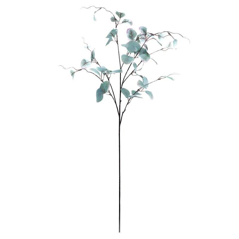 Large Green Eucalyptus Stem